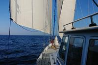 Rejsy na jachcie powyżej 20m loa. Staż kapitański na pływach, Tall Ship Races